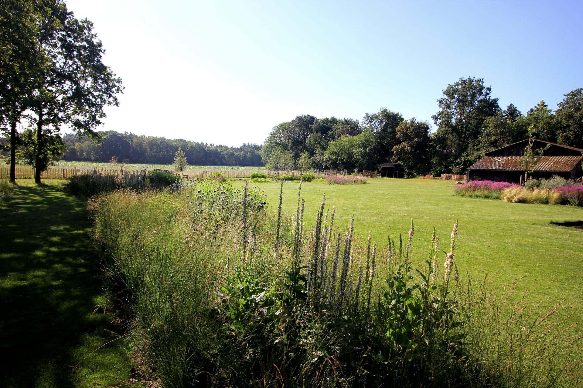 Landschappelijke tuin Jeroen Hamers