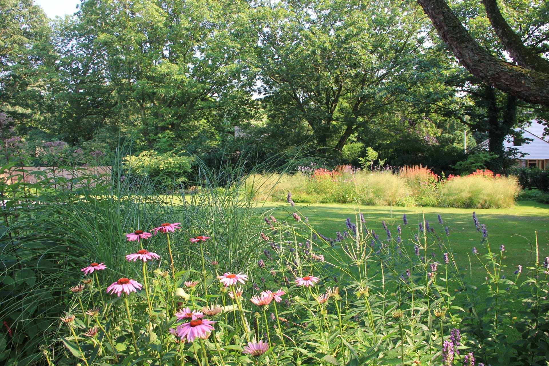 Overzicht tuinontwerp Oss Jeroen Hamers